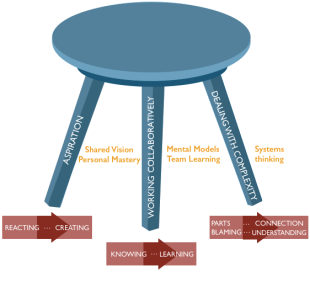 Systems thinking stool