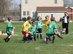 team sports Amatuer 2